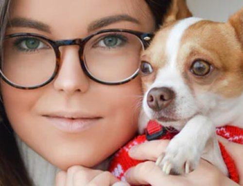 Pet Aid 24hr puppy care advice line